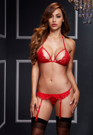 Red Lacy Bra Garter/open Crotch Panty 2p